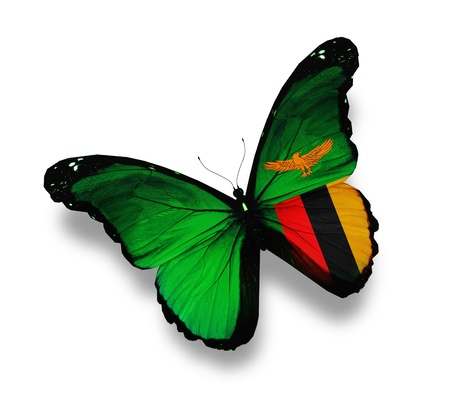 zambia flag: Zambia flag butterfly, isolated on white Stock Photo