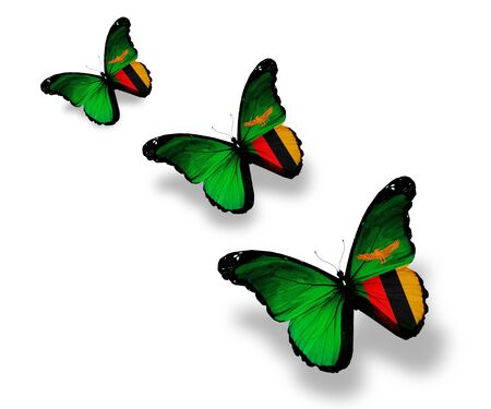 zambia flag: Three Zambia flag butterflies, isolated on white Stock Photo