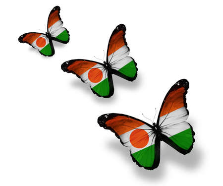Three Niger flag butterflies, isolated on white photo