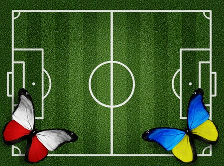 Poland ukraine flag butterflies on football field white lines on grass  photo