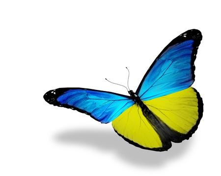 ukraine flag: Ukrainian flag butterfly flying, isolated on white background Stock Photo