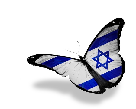 Israeli flag butterfly flying, isolated on white background