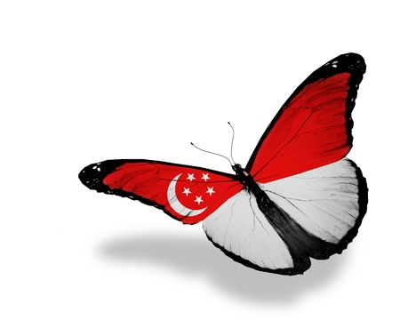 singaporean: Singaporean flag butterfly flying, isolated on white background Editorial