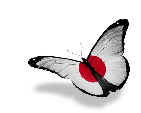 Borboleta de bandeira japonesa voando, isolado no fundo branco