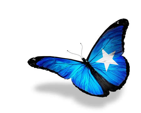 somalian: Somalian flag butterfly flying, isolated on white background Stock Photo