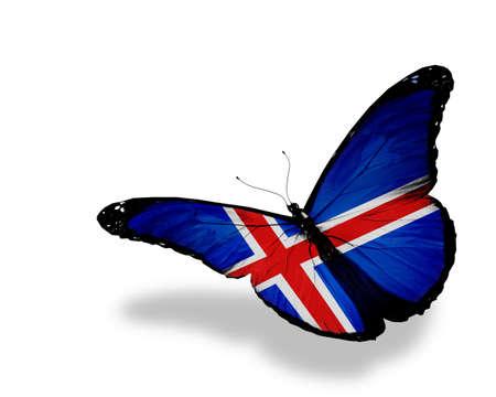 icelandic flag: Islandia pabell�n de mariposas volando, aislado en fondo blanco Foto de archivo