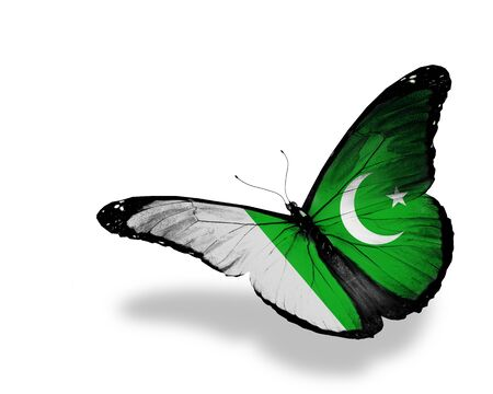 Pakistani flag butterfly flying, isolated on white background photo