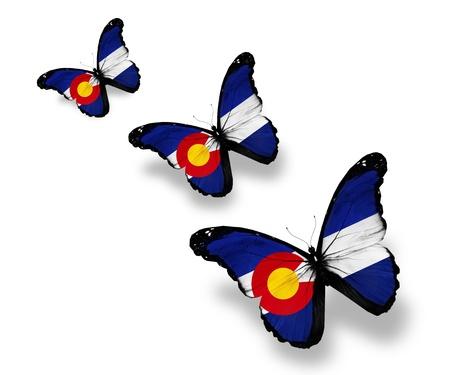 colorado flag: Three Colorado flag butterflies, isolated on white Stock Photo