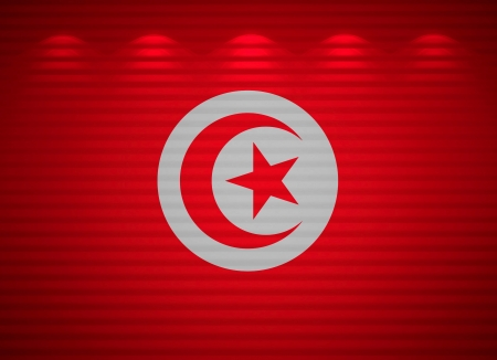 Tunisian flag wall, abstract background Stock Photo - 13769105
