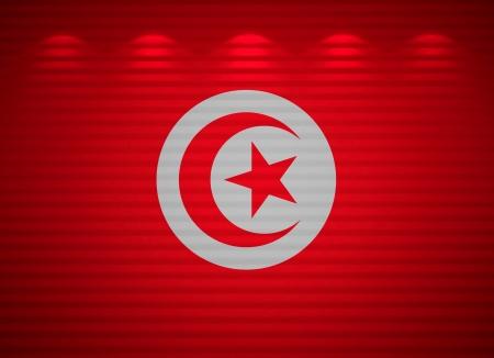 Tunisian flag wall, abstract background Stock Photo - 13769105