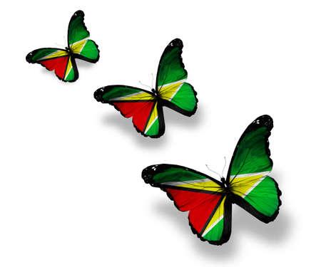 Guyana: Three Guyana flag butterflies, isolated on white Stock Photo