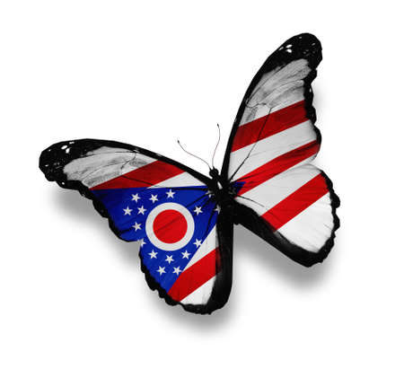 Ohio flag butterfly, isolated on white photo