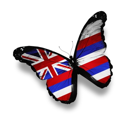 hawaii flag: Hawaii flag butterfly, isolated on white Stock Photo