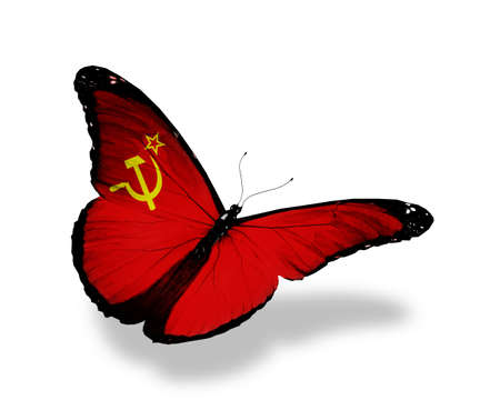 Soviet Union flag butterfly flying, isolated on white background photo