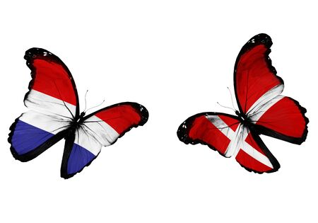 Concept - two butterflies with Netherlandish and Danish flags flying, like two football teams playing   photo