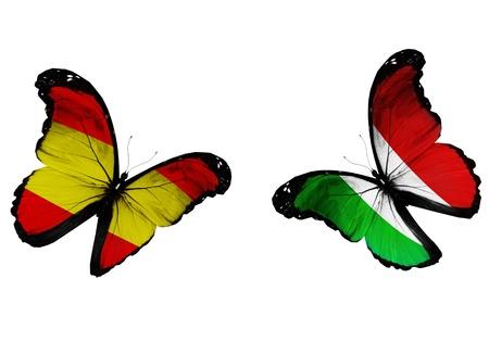 italien flagge: Konzept - zwei Schmetterlinge mit spanischen und italienischen Fahnen, wie zwei Fu�ballmannschaften spielen Lizenzfreie Bilder