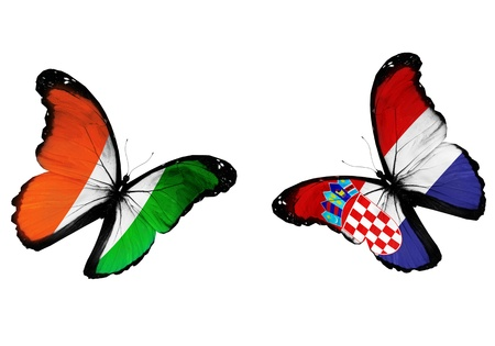 Concept - two butterflies with Irish and Croatian flags flying, like two football teams playing   photo