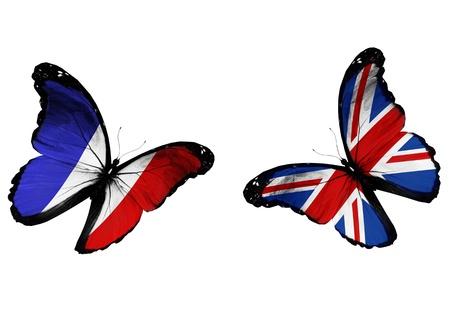 drapeau anglais: Concept - deux papillons avec des drapeaux fran�ais et anglais de vol, comme deux �quipes de football jouant