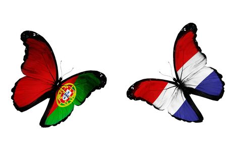 netherlandish: Concept - two butterflies with Netherlandish and Portuguese flags flying, like two football teams playing   Stock Photo