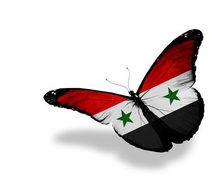 arabe: Siria pabellón de mariposas volando, aislado en fondo blanco Foto de archivo
