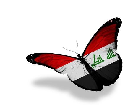 arabe: Bandera iraquí de mariposa voladora, aisladas sobre fondo blanco