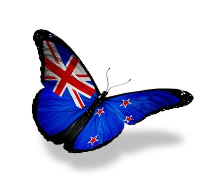 New Zealand flag butterfly flying, isolated on white background photo