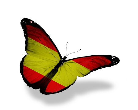 spanish flag: Spanish flag butterfly flying, isolated on white background