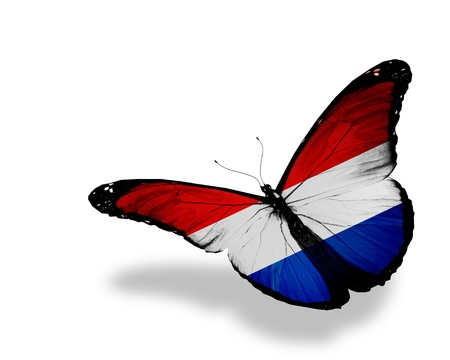 Netherlandish flag butterfly flying, isolated on white background Stock Photo - 13939588
