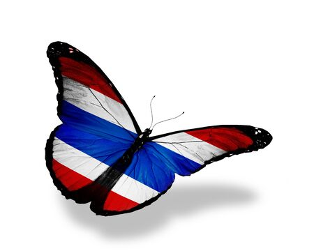 Thai flag butterfly flying, isolated on white background