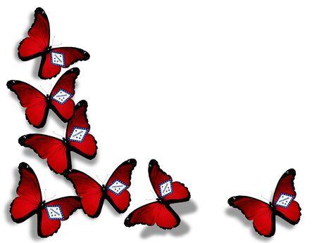 Arkansas flag butterflies, isolated on white background