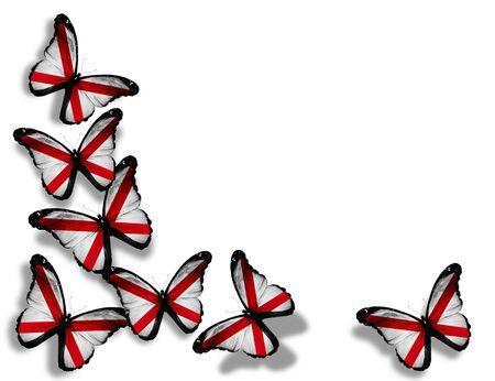 alabama flag: Alabama flag butterflies, isolated on white background