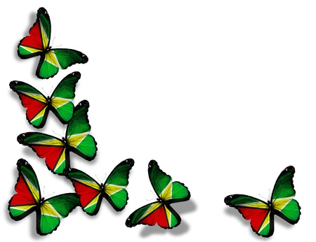 guyana: Guyana flag butterflies, isolated on white background