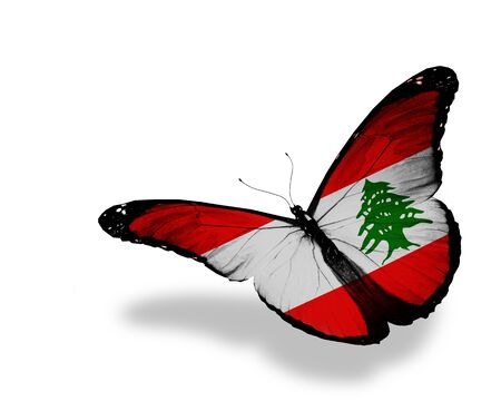 Lebanese flag butterfly flying, isolated on white background photo