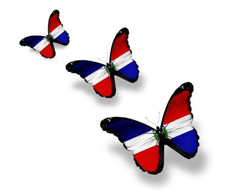 Three Dominican Republic flag butterflies, isolated on white photo