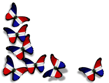 Dominican Republic flag butterflies, isolated on white background photo