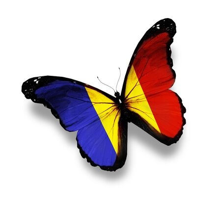 Chad flag butterfly, isolated on white Stock Photo - 14031006