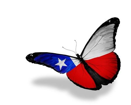 bandera chilena: Chile pabellón de mariposas volando, aislado en fondo blanco