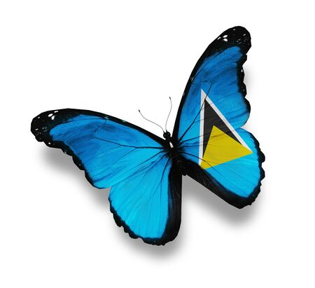 saint lucia: Flag of Saint Lucia butterfly, isolated on white