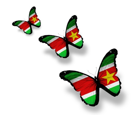 suriname: Three Suriname flag butterflies, isolated on white