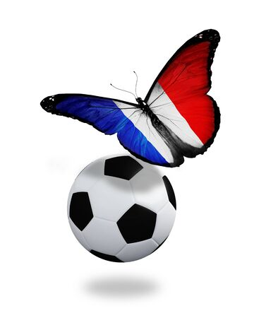 Concept - butterfly with French flag flying near the ball, like football team playing   photo