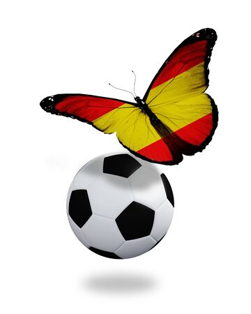 penalty flag: Concept - butterfly with Spanish flag flying near the ball, like football team playing