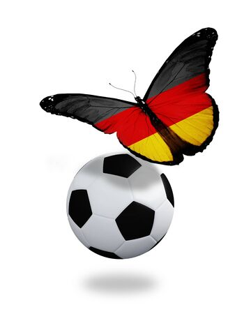 ball like: Concept - butterfly with German flag flying near the ball, like football team playing