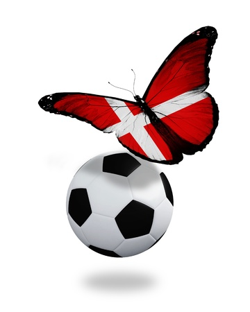 ball like: Concept - butterfly with  Danish flag flying near the ball, like football team playing   Stock Photo