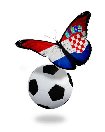 penalty flag: Concept - butterfly with Croatian flag flying near the ball, like football team playing
