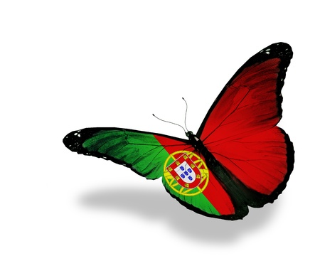 Portuguese flag butterfly flying, isolated on white background Stock Photo