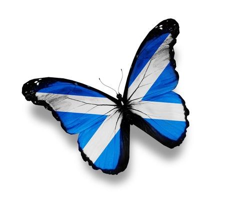 scottish flag: Bandiera della Scozia farfalla, isolato su bianco
