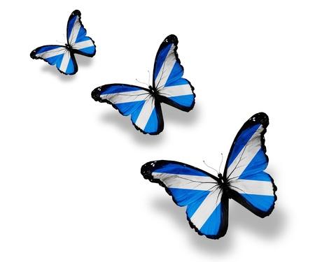 scottish flag: Tre farfalle bandiera scozzese, isolati su bianco