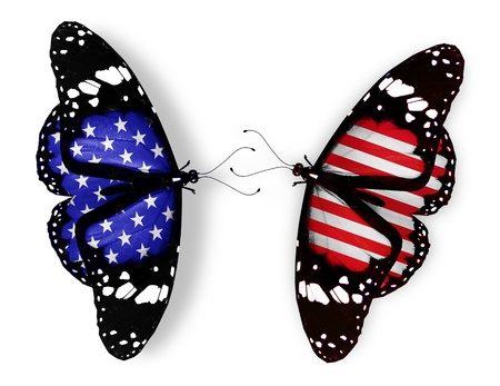 american butterflies: Two american flag butterflies, isolated on white background