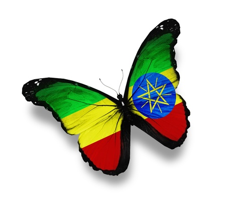 ethiopia: Gabonese flag butterfly, isolated on white