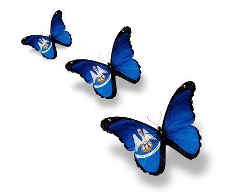 louisiana flag: Three Louisiana flag butterflies, isolated on white Stock Photo